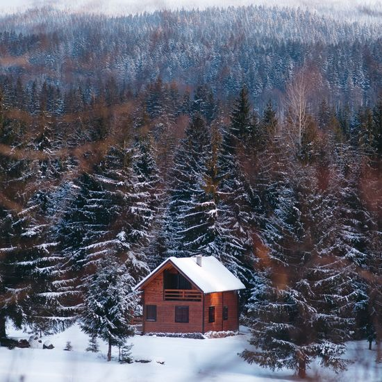 Cabinporn Cabin House In The Woods Winter Landscape Pinetrees🌲 Transylvania Mountain Landscape Photography Outdoors Snowing Beauty In Nature The Great Outdoors - 2017 EyeEm Awards Place Of Heart