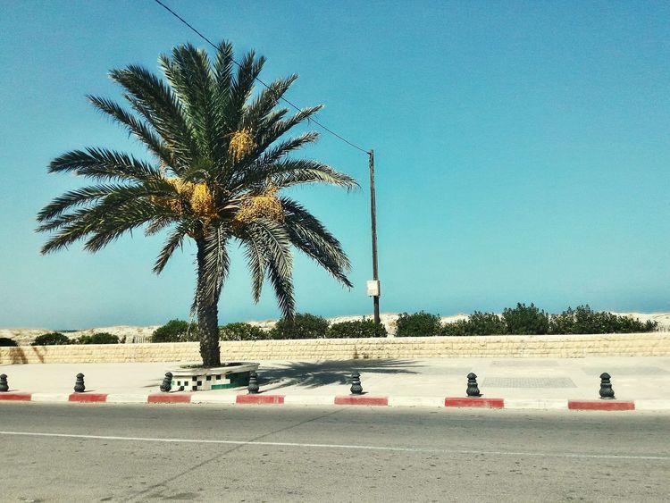 I Love My City Photo Shoot Sunshine Mahdia/Tunisia