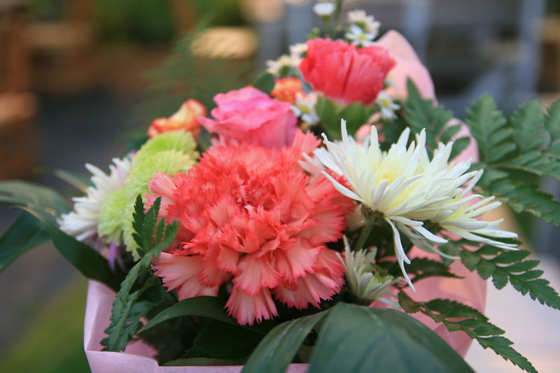 Flower Beauty In Nature Close-up Nature Flower Head Springtime Pink Color Outdoors Plant Day Freshness Fragility Petal No People Retail  Growth Peony  Carnation Flowers Bouquet