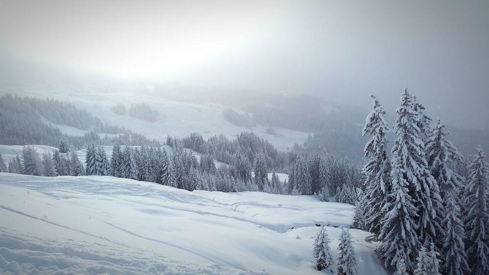Kitzbühel Winterzeit Endlich mal Sonne
