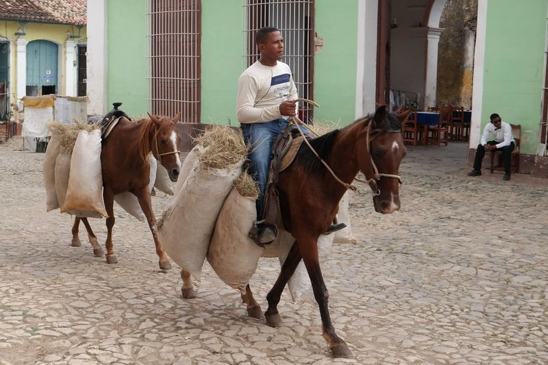 Cuba Collection Cuba Trinidad Horses Daily Workout Colorful Houses From My Point Of View Transportation People Photography EyeEm Best Shots Eye4photography