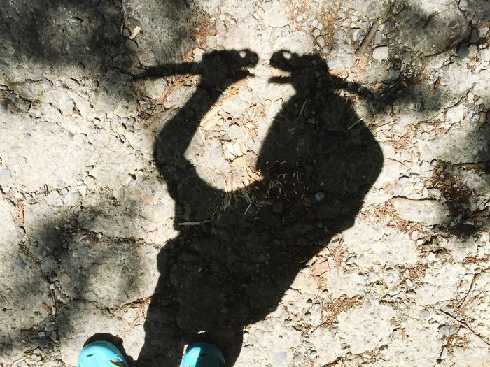 Shadow Day Sunlight Outdoors Standing Real People One Person Human Body Part Men Close-up Human Hand People カメレオン