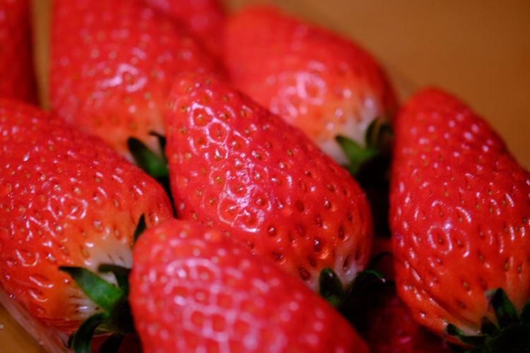 静岡のいちご章姫 Close-up Food Food And Drink Fruit Fujifilm Fujifilm X-E2 Fujifilm_xseries Red Strawberry Sweet Xf60 あきひめ いちご いちご ストロベリー 甘い 章姫 苺 草莓