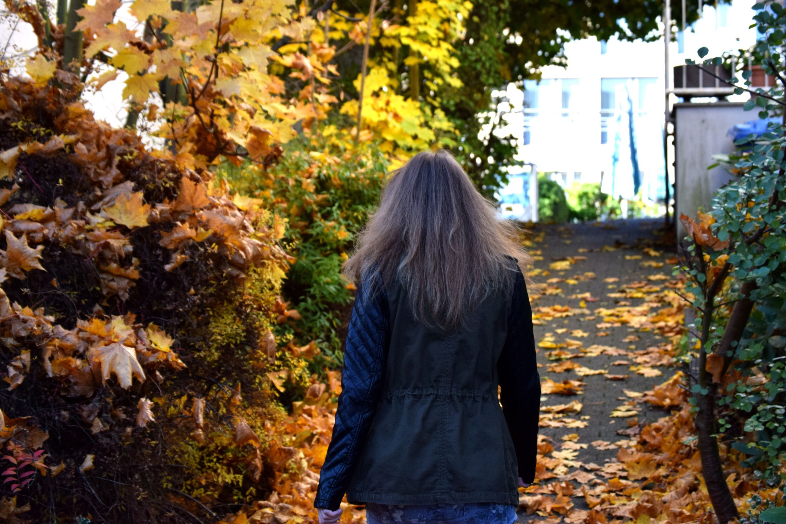 rear view, tree, change, autumn, nature, real people, outdoors, day, leisure activity, leaf, lifestyles, growth, women, one person, beauty in nature, only women, adult, adults only, people