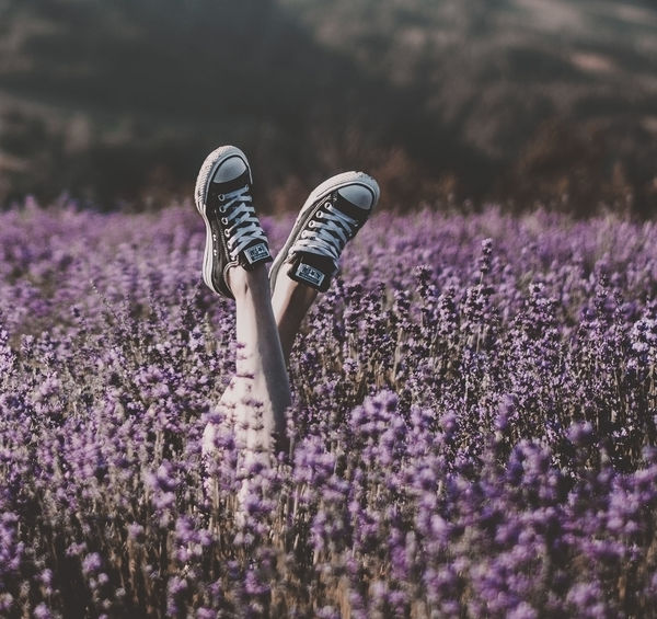 Lavender Nature Freedom Good Vibes Lavender Field Feet Legs Sneakers Happiness Lightheartedness Carefree Countryside Country Ilovenature EyeEm Nature Lover EyeEm Best Shots Purple Color Legs In The Air Folk Summertime Neverstopexploring  Flower Head Purple Crocus Perfume Pink Color Close-up Plant Flowering Plant Lavender Colored The Great Outdoors - 2018 EyeEm Awards