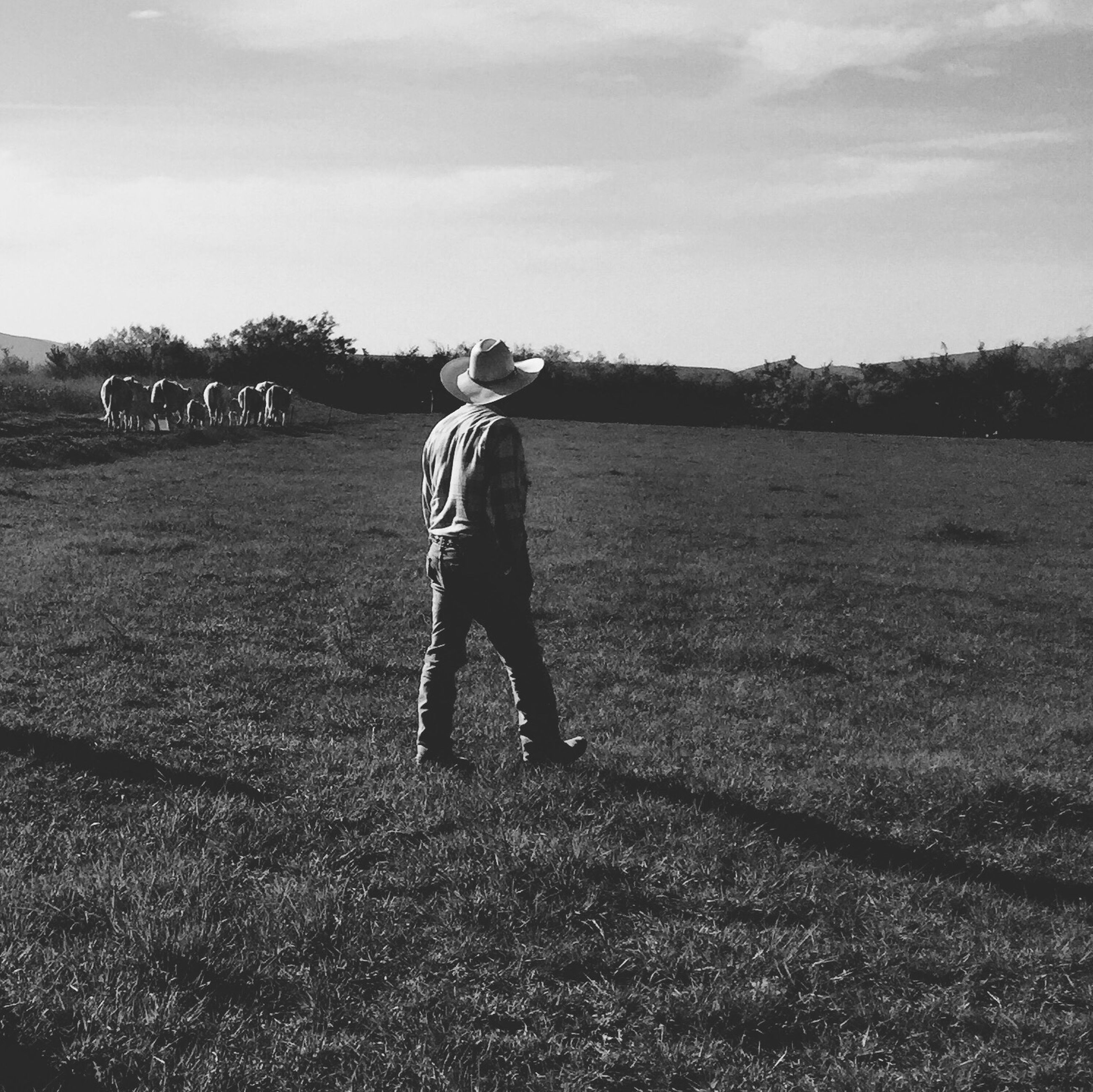 field, grass, sky, leisure activity, lifestyles, full length, landscape, grassy, casual clothing, childhood, tranquility, nature, standing, tranquil scene, cloud - sky, rear view, boys, day