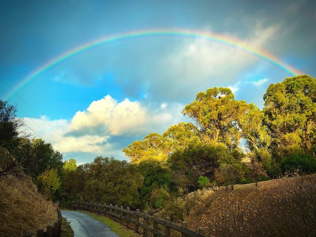 """""""Under The Rainbow"""" A beautiful full rainbow over a local open space trail in the suburban San Francisco East Bay Area, California. California Clouds And Sky Clouds Trails Suburban Exploration Open Space Rainbow🌈 Sky Cloud - Sky Rainbow Beauty In Nature Tree Nature Scenics - Nature"""