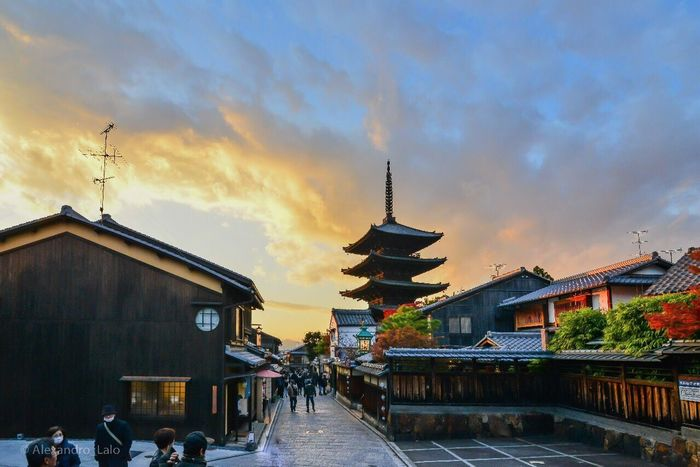 Sunset in Yasaka Nature Flying Sky Bird Winter Blue Autumn Outdoors Day Mountain Clear Sky Autumn Colors Beauty In Nature No People Animals In The Wild Low Angle View Animal Themes One Animal Cold Temperature Summer Japan Kyoto Pagoda Temple