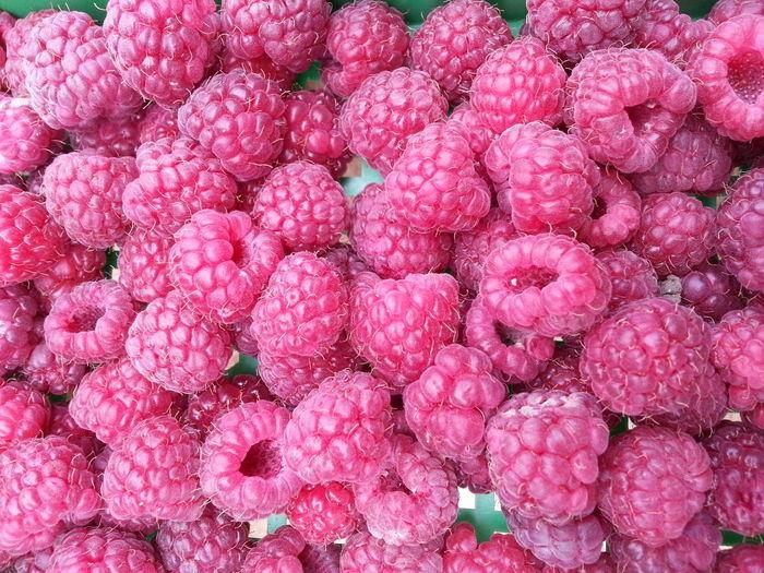 So colorful so tasty :) Raspberry Relaxing Streamzoofamily Enjoying Life