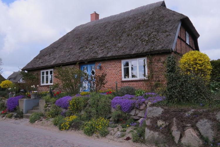 Schönes Haus in Groß Zicker auf Rügen Architecture Beautiful Garden Beautiful House Blooming Day Flower Island Ruegen Plant