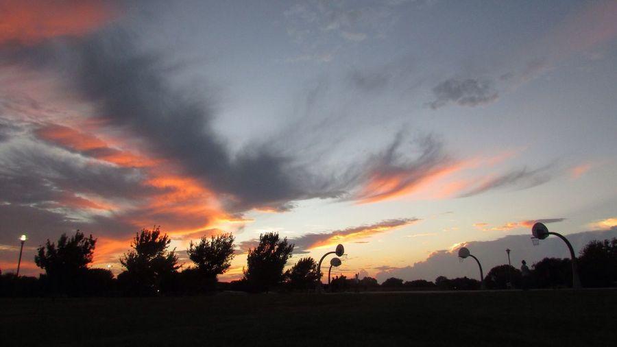 Sun setting at the park First Eyeem Photo