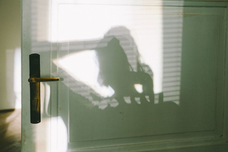 Shadow of people on glass wall