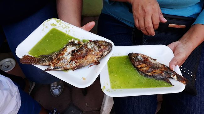 Feria de la Mojarra Pescado Catemaco EyeEm Selects Food And Drink Food Plate Human Body Part Human Hand Ready-to-eat