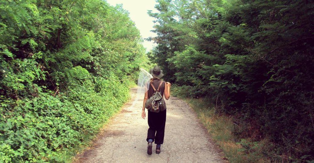Tree Walking