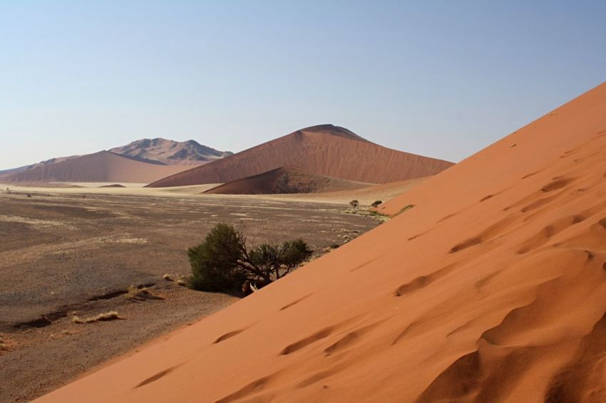 Imagine standing here looking out at nothingness, a nothingness full of beauty and tranquility, peace and serenity. That is how I felt in this landscape of Sossusvlei in Namibia. Arid Climate Beauty In Nature Clear Sky Day Desert Landscape Nature Nature Nature Photography No People Outdoors Physical Geography Red Dunes Sand Sand Dune Sand Dunes Scenics Sky Sossusvlei Sossusvlei Desert - Namibia Tranquil Scene Tranquility The Great Outdoors - 2017 EyeEm Awards