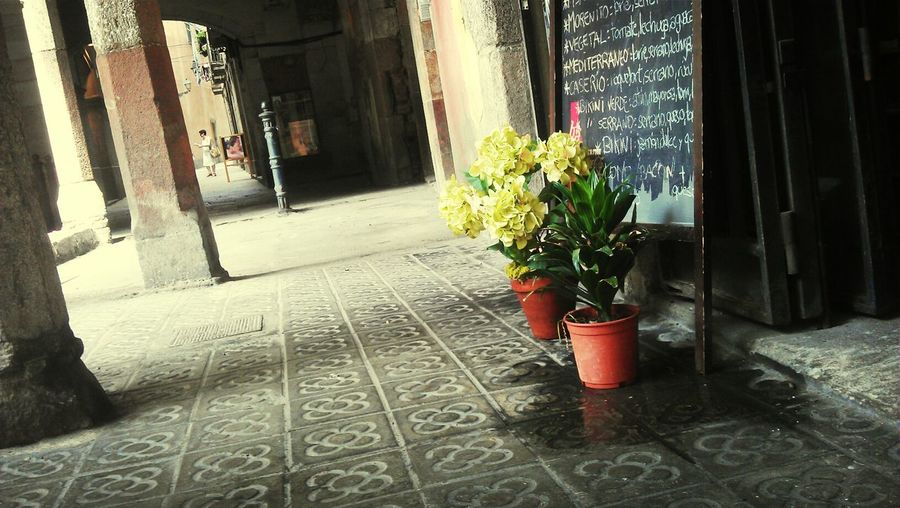 Streetphotography Flowers