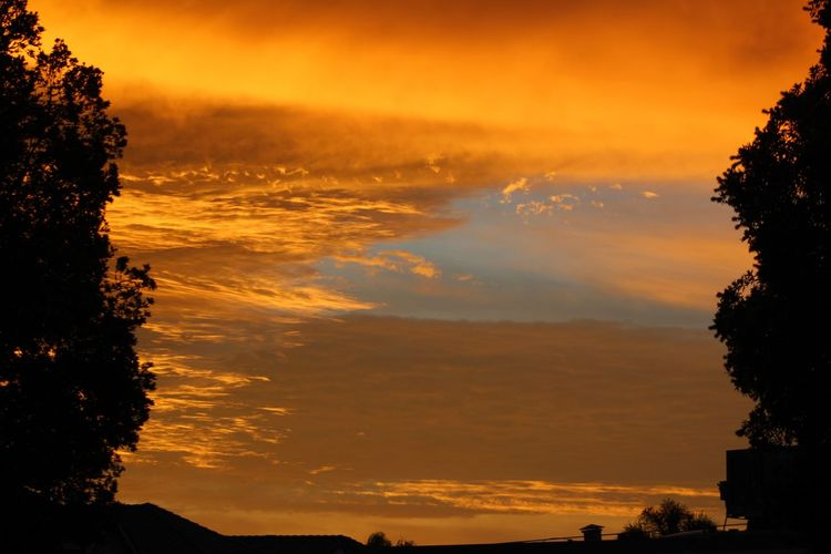 Beauty In Nature Cloud - Sky Day Nature No People Orange Color Outdoors Scenics Silhouette Sky Sunrise Sunrise_sunsets_aroundworld Sunset Tranquil Scene Tranquility Tree