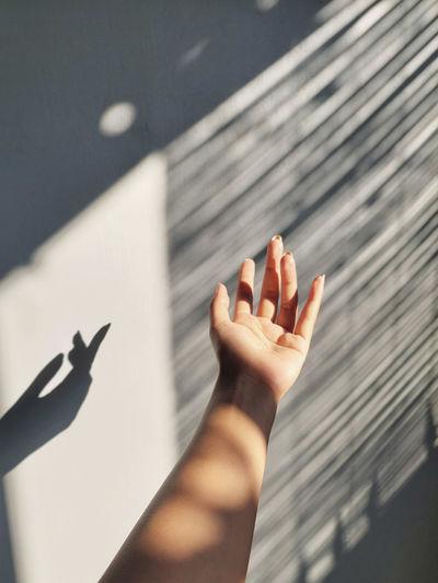 High angle view of woman shadow on hand