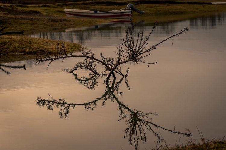 lake reflections.. Bare Tree Beauty In Nature Branch Close-up Day Lake Lake Plastiras Limni Plastiras Nature No People Outdoors Plastira Lake Plastira Lake, Karditsa Reflection Scenics Sky Standing Water Sunset Tranquil Scene Tranquility Tree Water EyeEm Gallery Our Best Pics EyeEm Nature Lover