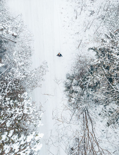 Directly Above Shot Of Man Standing Amidst Forest On Snow During Winter