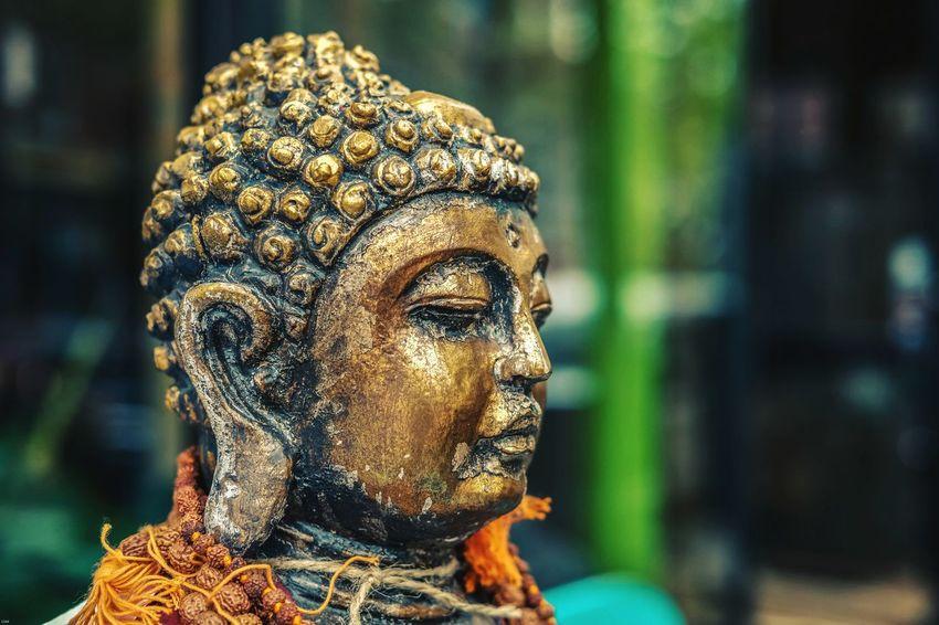 Bodhi Statue Sculpture Human Representation Art And Craft Close-up Bust  Fine Art Statue Female Likeness Male Likeness Buddha