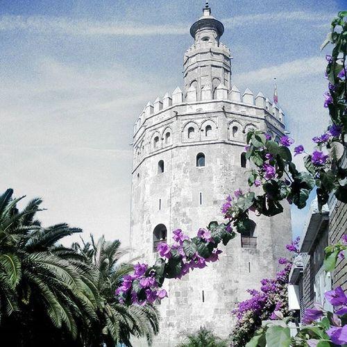 """""""Le dije que si... Fui a una torre que brillaba y vi como nos temblaba el cielo, fuimos de la mano y dijo si, cuando dije ya te quiero."""" Si llueve en Sevilla - Andrés Suárez"""