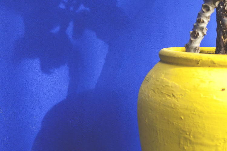 Close-up of yellow blue wall