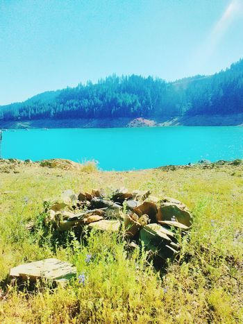 Beauty In Nature Adventure Day No People Sky Nature Green Color Travel Destinations Camp Fire Blue Blue Sky Water Lake View California Love Hiking Hiking❤ Outdoors Backgrounds Growth Clear Sky The Secret Spaces EyeEmNewHere The Street Photographer - 2017 EyeEm Awards The Great Outdoors - 2017 EyeEm Awards BYOPaper! Live For The Story