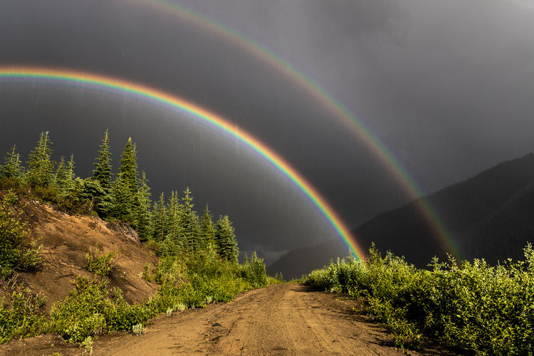 Don't you just love roads like this ? A double rainbow and summer rain storm on the road next to our camp in a remote upper stretch of the North Thomson River. I drove around these forestry roads for three days without seeing another person or vehicle. Nice to feel outnumbered by the bears ;-) . This is the same location that I took the shot of the ridge next to the Metis Peak massifs (nine shots ago in my feed). British Columbia, Canada Beauty In Nature Rainbow Plant Tree Scenics - Nature No People Nature Tranquil Scene Double Rainbow Tranquility Sky Multi Colored Non-urban Scene Idyllic Environment Land Direction Landscape The Way Forward Outdoors Road Dirt Road Adventre Northern British Columbia Remote