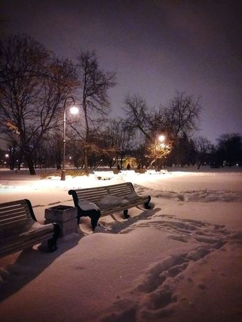 Night park Snow Cold Temperature Tree No People Frozen Beauty In Nature Nature Outdoors Illuminated Sky Night Streetlamp Autumn 2016 Tranquil Scene Light And Shadow Snowing Scenics Saint Petersburg Electricity  City St Petersburg Tranquility Park