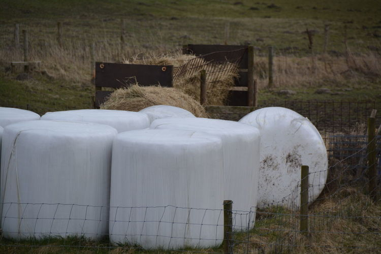 Bales covered with tarpaulin on field
