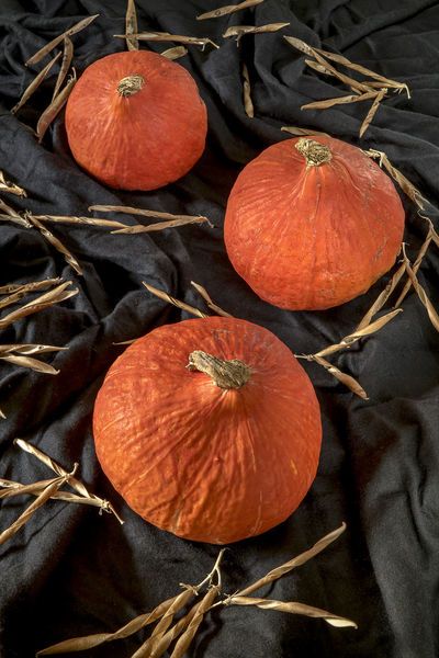 Red kuri squash Haloween Pumpkins Autumn Close-up Food Halloween Healthy Eating Orange Color Pumpkin Red Kuri Squash Season  Squash Squash - Vegetable Vegetable Vegetables