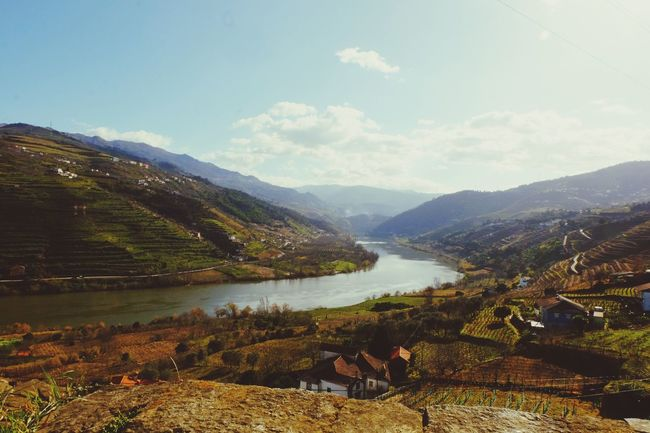 Showcase April Landscape River Douro  Portugal Spring