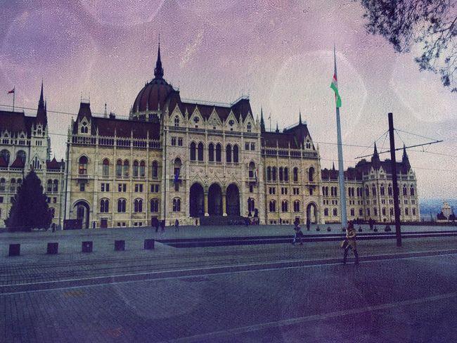 Budapest Budapest, Hungary Parliament Hungarian Parliament Sight Sightseeing Seeing The Sights Enjoying The Sights Christmas Tree Christmastime Sight Seeing Kossuthter Kossuth Square Street