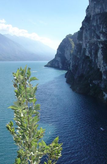 Beauty In Nature Blue Cliff Coastline Day Gardasee Horizon Over Water Idyllic Mountain Nature No People Ocean Outdoors Plant Ponaletrail Remote Rippled Riva Del Garda Rock Formation Scenics Sea Sky EyeEm Best Shots Landscapes The KIOMI Collection