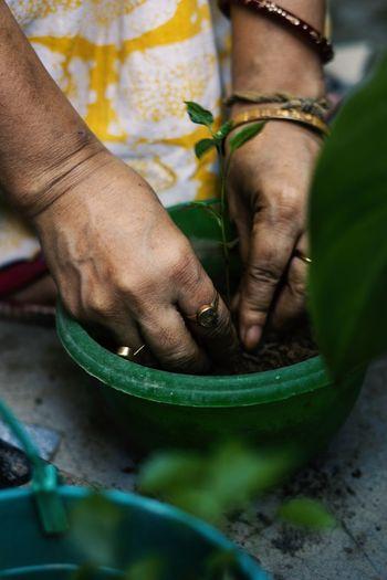 A women gardening