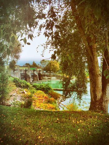 Dam Nature River Riverside