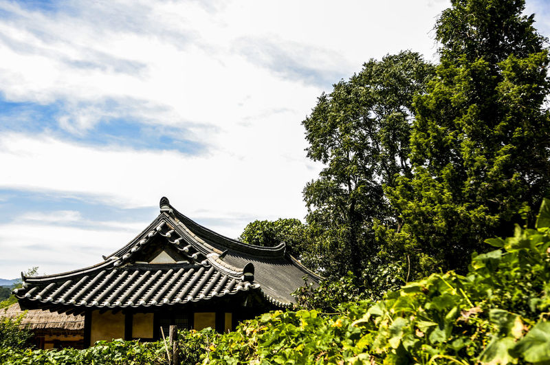 Low Angle View Of Traditional House Amidst Trees Against Sky