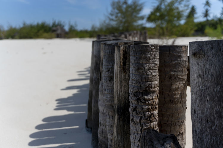 Close-up of wooden post on shore
