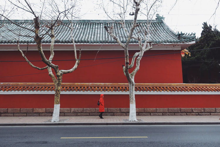 CNY Architecture Built Structure Building Exterior Tree Road Street City One Person Building Red Real People Wall Cityscape City Life Streetphotography Walking Day Outdoors Nature Oldtown Old-fashioned Life Lifestyles China Chinese New Year