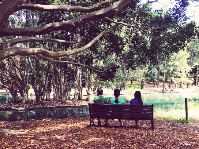 Enjoying nature... Sitting Bench Leisure Activity Outdoors Beauty In Nature Rear View Pond Trees People Photography