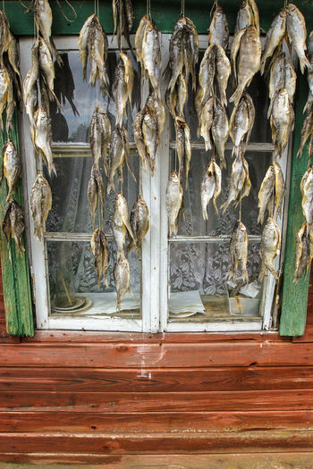fish dries near the house Dries Estonia Wood Architecture Day Fish Fish Dries Hanging Up History House Lamp Old Old House Red House Värska