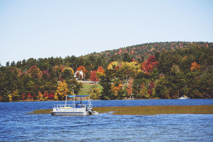 New England  New Hampshire, USA Autumn Beauty In Nature Change Clear Sky Day Forest Full Length Leaf Leisure Activity Men Nature Nautical Vessel New Hampshire Outdoors People Real People River Sailing Scenics Sky Transportation Tree Water