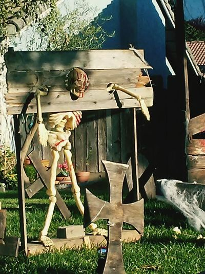 Wood - Material Day Outdoors Grass Human Body Part One Person Sunshine Skeletal Remains Torture Device Halloween Decorations All Hollows Eve Yard Art Yard Decorations holiday spirit Holiday Season Halloweenideas Decorate; Bones Exposed Midevilstyle Medevil