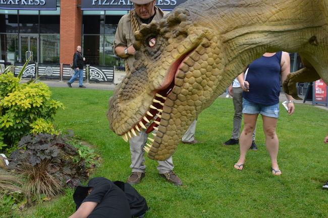 Big Long Teeth Dinosaur Fearsome Look Grass Green Hungry Manchester UK Nikon D5200