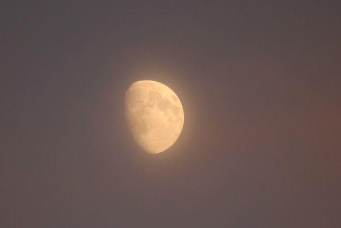 Luna Lune