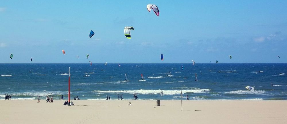 My Happy Place  Sea Birds Kite Surfing