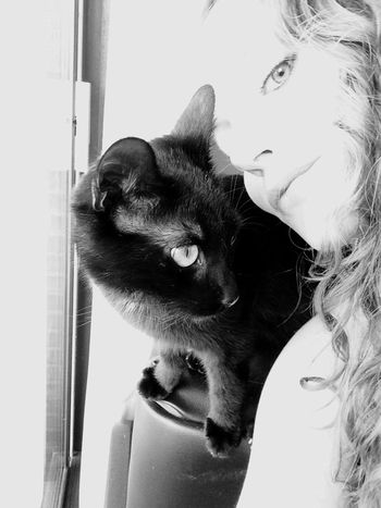 Me Myself And I Love Cat Cat Love Life Blackandwhite Cuddle