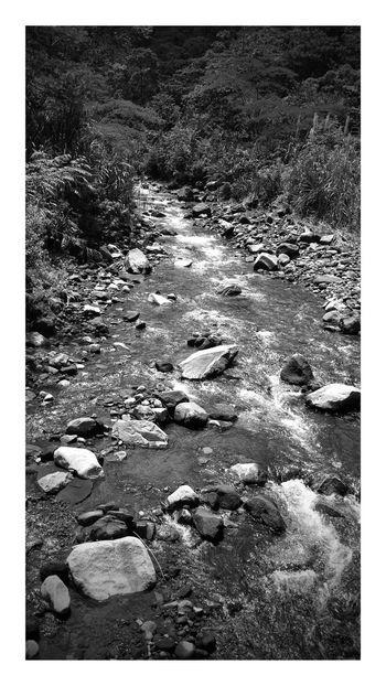 On A Hike Nature Walking Enjoying The Sights Cascades