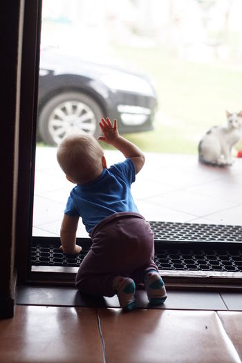 Rear view of boy playing in window